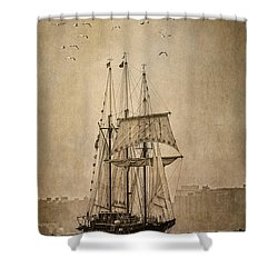 The Peacemaker Shower Curtain by Dale Kincaid