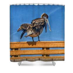 Shower Curtain featuring the photograph The Pelican by Hanny Heim