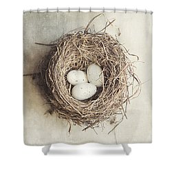 The Perfect Nest Shower Curtain by Lisa Russo