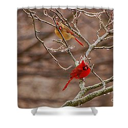 The Perfect Pair Shower Curtain by Mary Carol Story