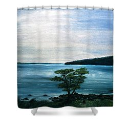 The Picnic Area Shower Curtain