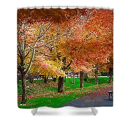 The Picnic Table Shower Curtain by Kirt Tisdale