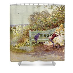 The Picture Book Shower Curtain by Thomas James Lloyd