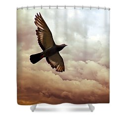 The Pigeon Shower Curtain by Bob Orsillo