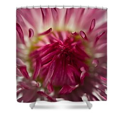 The Pink Center Shower Curtain by Sabine Edrissi