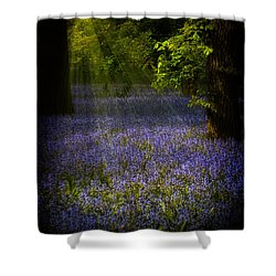 Shower Curtain featuring the photograph The Pixie's Bluebell Patch by Chris Lord