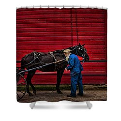 The Plain People Shower Curtain