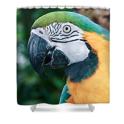 The Poetry Of Nature Shower Curtain by Sharon Mau
