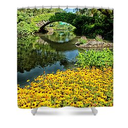 The Pond Shower Curtain by Karol Livote