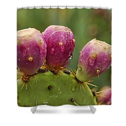The Prickly Pear  Shower Curtain by Saija  Lehtonen