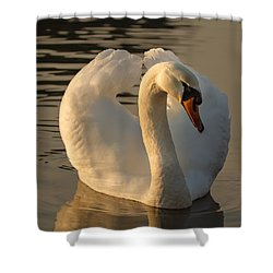 Shower Curtain featuring the photograph The Pure In Heart by Rose-Maries Pictures