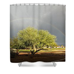 The Rain And The Rainbow Shower Curtain