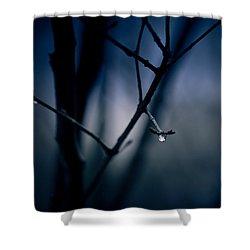The Rain Song Shower Curtain by Shane Holsclaw