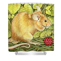 The Raspberry Mouse Shower Curtain