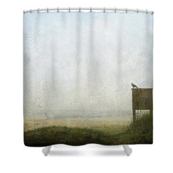 The Raven And The Beach Shower Curtain