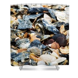 The Raw Bar Shower Curtain