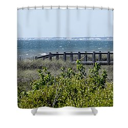Shower Curtain featuring the photograph The Real Gulf Coast by Debra Forand