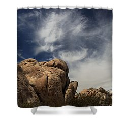 The Reclining Woman Shower Curtain