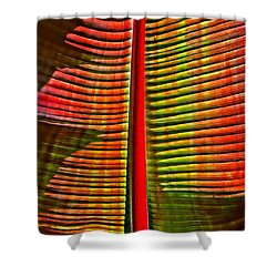 The Red Palm Shower Curtain by Joseph J Stevens