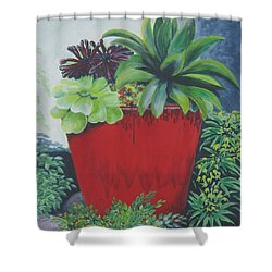 The Red Pot Shower Curtain by Suzanne Theis