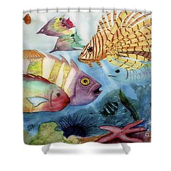 The Reef Shower Curtain by Mohamed Hirji