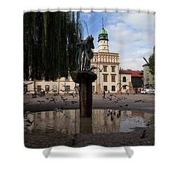 The Renaissance Town Hall And Central Shower Curtain by Panoramic Images