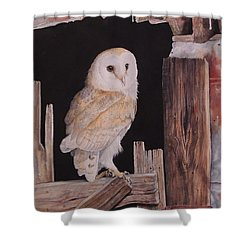 The Resting Place.  Sold Shower Curtain