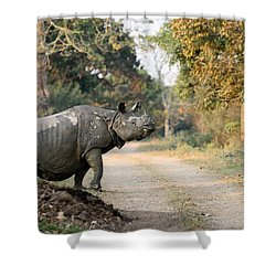 The Rhino At Kaziranga Shower Curtain by Fotosas Photography