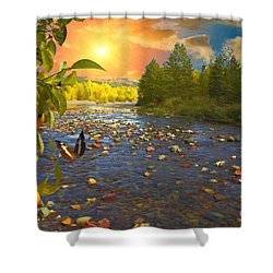 The Riches Of Life Shower Curtain