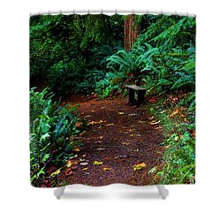 The Right Path Shower Curtain by Jeanette C Landstrom