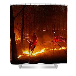 The Ring Of Fire Shower Curtain by Bill Stephens