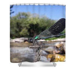 Shower Curtain featuring the photograph The River Dragonfly by Stwayne Keubrick