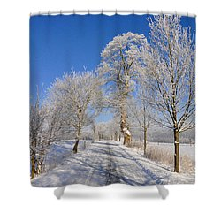 The Road Shower Curtain by Aged Pixel