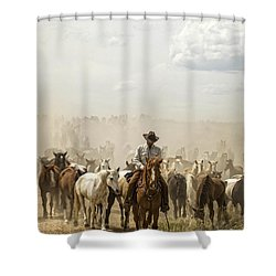 The Road Home 2013 Shower Curtain