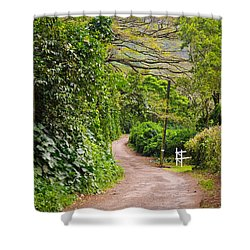 The Road Less Traveled Shower Curtain by Denise Bird