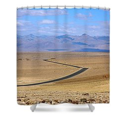 Shower Curtain featuring the photograph The Road by Stuart Litoff