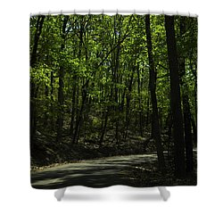 The Roads Of Alabama Shower Curtain by Verana Stark