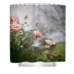 The Rose Garden Shower Curtain by Linda Unger