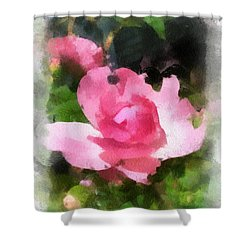 Shower Curtain featuring the photograph The Rose by Kerri Farley