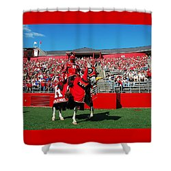 The Scarlet Knight And His Noble Steed Shower Curtain