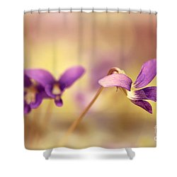 The Secret World Of Wild Violets Shower Curtain by Lois Bryan