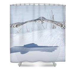 The Silent Hunter Shower Curtain