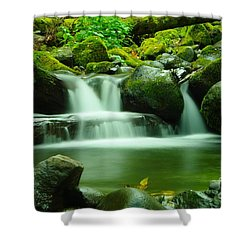 The Small Water Shower Curtain by Jeff Swan