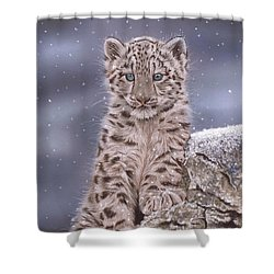 The Snow Prince Shower Curtain