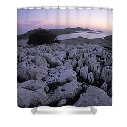 The Sparse And Beautiful Cluster Shower Curtain