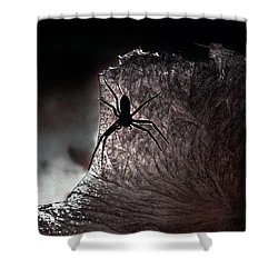 The Spider On The Candle - Subtly Colored Version Shower Curtain