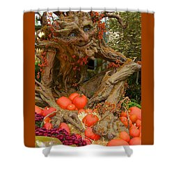 The Spirit Of The Pumpkin Shower Curtain by Venetia Featherstone-Witty