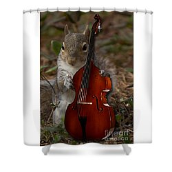 The Squirrel And His Double Bass Shower Curtain