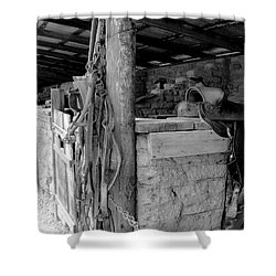 Shower Curtain featuring the photograph Very Stable by Natalie Ortiz