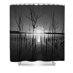 The Star Arrives Shower Curtain by Raymond Salani III